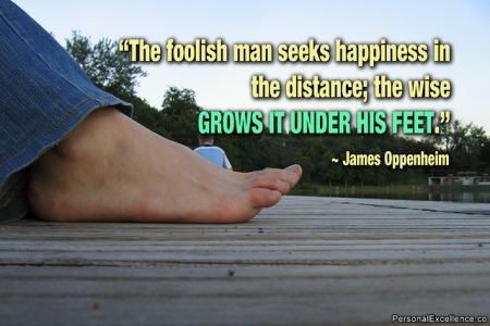 A foolish man seeks happiness