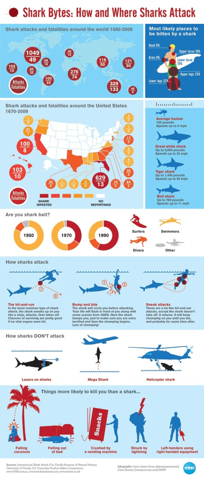 Shark Attack Infographic