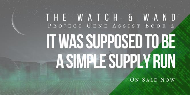 Watch and Wand Supply Run - www.alliepottswrites.com