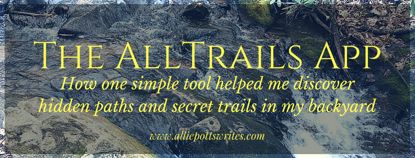 How one simple tool helped me discover hidden paths and secret trails in my backyard